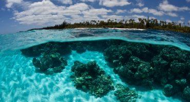 La destruction des récifs coralliens comme conséquence du tourisme de masse