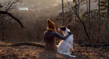 Top 5 des destinations pour pratiquer la cani-rando