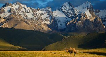 10 bonnes raisons de voyager au Kirghizistan