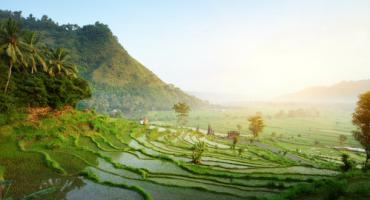 Destination de la semaine : Bali