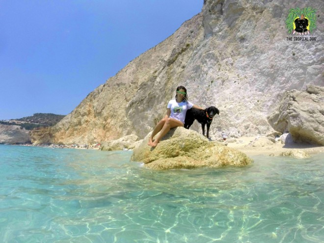 The Tropical Dog en Grece