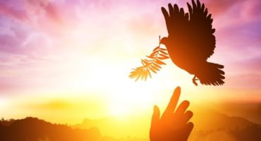 Pacifisme – Où voyager pour trouver la paix dans le monde ?