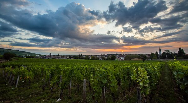 Route des vins - Bourgogne