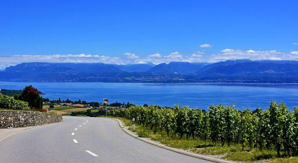 Route des vins - Savoie
