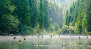 Entre lacs et légendes : évasion sur les routes mystérieuses des Carpates