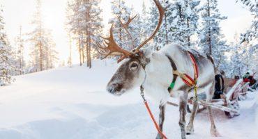 Finnair : rendez-vous sur les terres du Père Noël sans escale depuis Paris-CDG