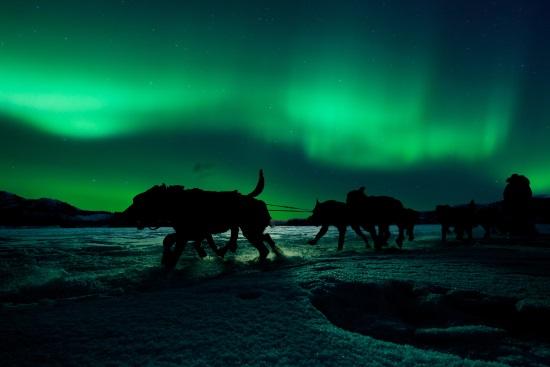 Norvège aurores boréales