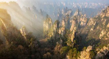 Sur la passerelle en verre au dessus de la forêt d'Avatar