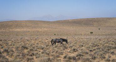 Les plus beaux paysages du Nevada