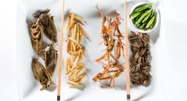 Top 5 des traditions culinaires les plus étranges au monde
