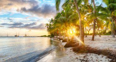 Destination de la semaine : la Guadeloupe