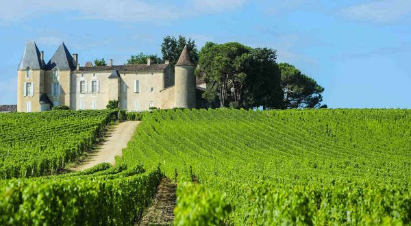 Route des vins Bordeaux