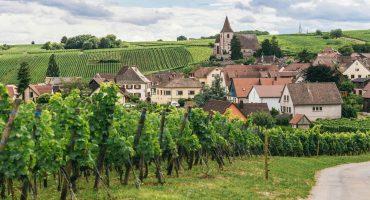 Road trip sur les routes des vins depuis Bordeaux