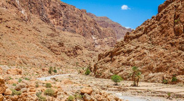 vallée du Todgha