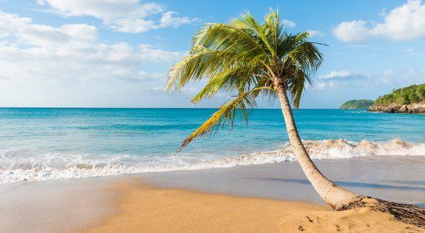 iStock Guadeloupe plage de rêve