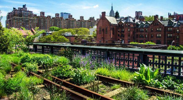 High Line iStock