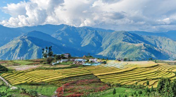ferme au bhoutan