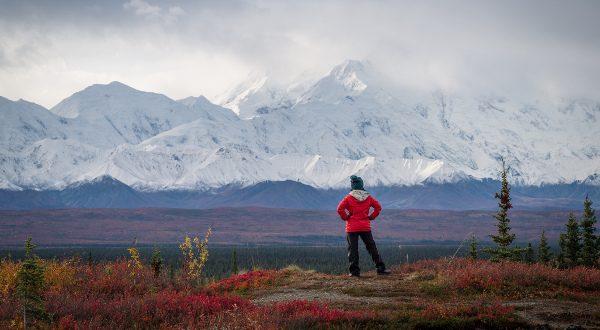 parc national de Denali Alaska iStock 600x330