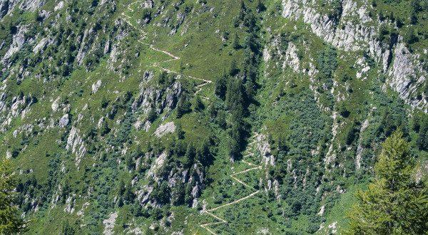 Vallée de Chamonix iStock
