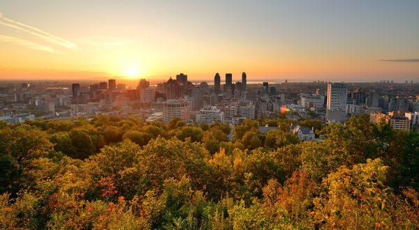 Parc du Mont Royal Montréal Shutterstock