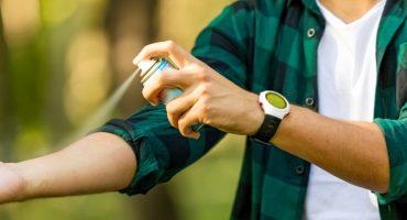 Astuces pour éviter et traiter les piqûres de puces