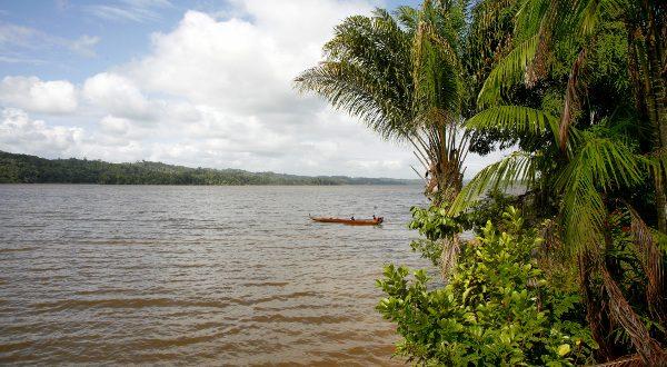 Maroni_Guinea Shutterstock
