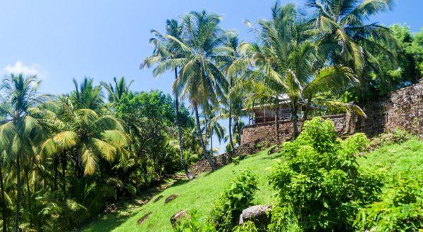 Salut island_Guinea Shutterstock