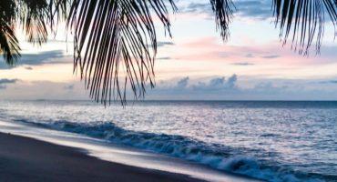 Top 5 des incontournables à faire en Guyane