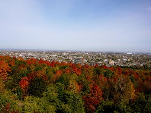 Les hauteurs de Montréal